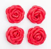 Rose rouge isolé sur fond blanc — Photo