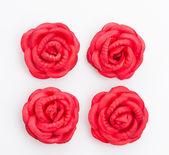 Rosa rossa isolato su sfondo bianco — Foto Stock