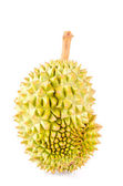 Durian fruit isolated white background — Stock Photo