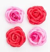 красная роза, изолированные на белом фоне — Стоковое фото