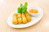 Fried spring rolls — Stock Photo