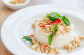 Spicy fried chicken with basil and rice — Foto Stock