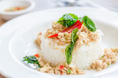 Spicy fried chicken with basil and rice — Stock Photo