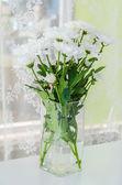 Blomma i vasen — Stockfoto