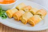 Fried Spring rolls — Stock Photo
