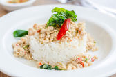 Spicy fried chicken with basil and rice — Stok fotoğraf