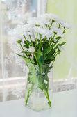 Vazoda Çiçekler — Stok fotoğraf