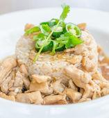 Pirinç kahverengi soslu tavuk — Stok fotoğraf
