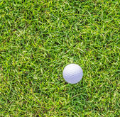 Golf ball on green grass — Stockfoto