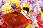Sweet honey in flowers — Stock Photo