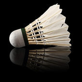 Badminton black — Stock Photo