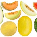 Постер, плакат: Melon set