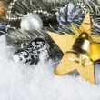 Xmas fir branch gold silver — Stockfoto