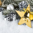 Xmas fir branch gold silver — Stock Photo