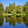 Symmetrical landscape with trees reflecting in lake in autumn — Stock Photo #15731987
