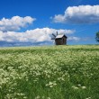 Stock Photo: Landscape with a wind mill