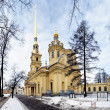 Peter and Paul Cathedral, St. Petersburg, Russia - Stok fotoğraf