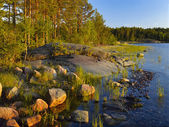 Evening at shallow water on Ladoga lake — Stock Photo
