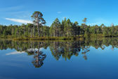 Semiostrovnoe Lake on Bolshoy Solovetsky Island, Russia — Stock Photo