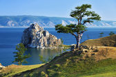 Tree of desires on Lake Baikal — Stock Photo