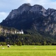 Panorama of Bavarian Alps with Neuschwanstein Castle — Stock Photo #15762541