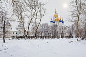 View of the Sofia-Uspensky Cathedral in Tobolsk Kremlin, Russia — Стоковое фото