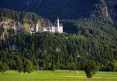 Neuschwanstein Castle in the Bavarian Alps — Stock Photo