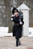 Girl - Norwegian Royal Guard in Oslo — Stockfoto