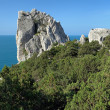 Stock Photo: SwWing Rock in Simeiz, Crimea