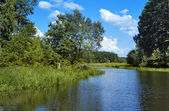 Backwater of the Volga River — Stock Photo