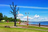 Tree of Desire - sculpture in Petrozavodsk, Russia — Stock Photo