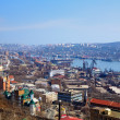 Stock Photo: Vladivostok, port in Golden Horn Bay
