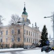 Pori City Hall, Finland - Stock Photo