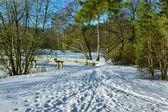 Paisaje invernal con un puente peatonal — Foto de Stock