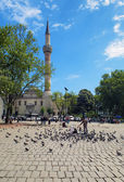 Pigeons in the square at the Bayezid mosque in Istanbul — Stock Photo