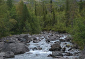Mannepahk Stream in Khibiny Mountains, Russia — Stock Photo