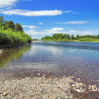 Drying channel of AbakRiver, Russia — Stock Photo #18668523