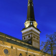 Vasteras Cathedral in winter evening, Sweden — Zdjęcie stockowe #19653909