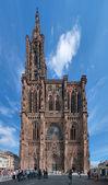 Katedrála ve štrasburku, francie — Stock fotografie