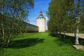 Wieża biełozierskiego — Zdjęcie stockowe