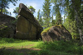 Rock in the forest at reserve Krasnoyarsk pillars — Stock Photo