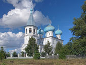 Church of Presentation of Lord in the village Rikasovo, Russia — Stockfoto