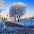 Frosted tree in Kolomna Kremlin — Stock Photo