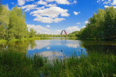 Summer landscape with lake and arch of cable-stayed bridge — Stock Photo