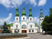 Theotokos of Pochayiv Cathedral in Mukacheve, Transcarpatia, Ukraine — Stock Photo