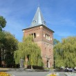 Постер, плакат: Bell tower of Church of St Bartholomew and monument of Yuriy Drohobych in Drohobych Ukraine