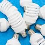 Bulbs — Stock Photo