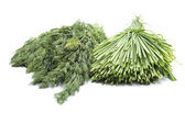 Fresh Green Chives and Dill on white background — Stock Photo