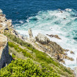 Stock Photo: Lighthouse at Cape Town city Cape of Hope pathway