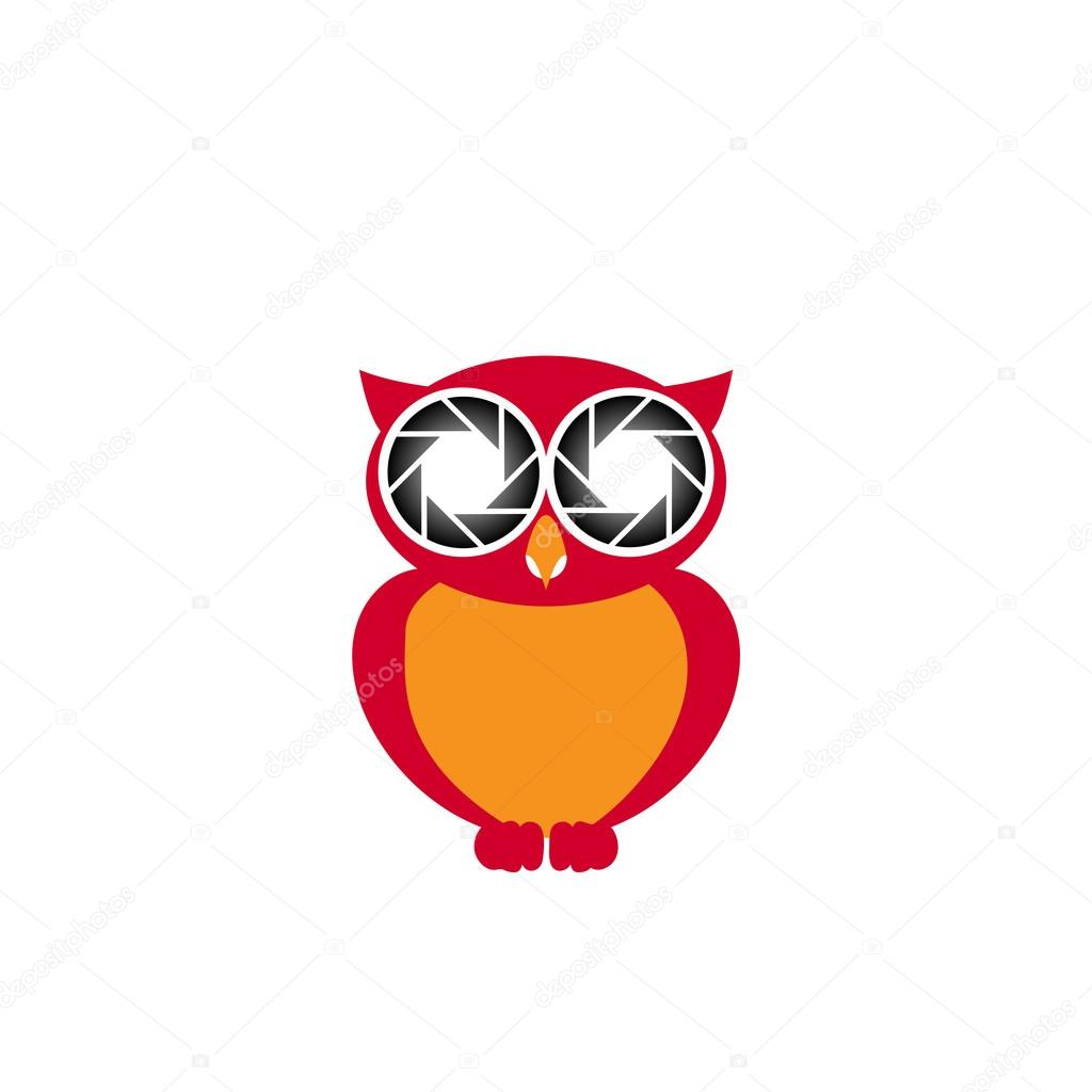 Cute Photography Logo Cute Owl Photography Logo